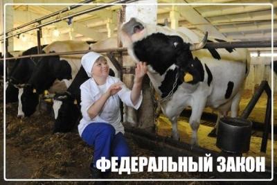 Гарантии женщинам, работающим в сельской местности, теперь закреплены в Трудовом кодексе РФ